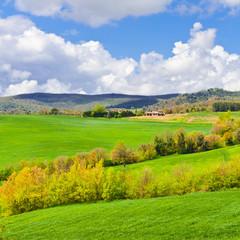 In de dag Lime groen Tuscany