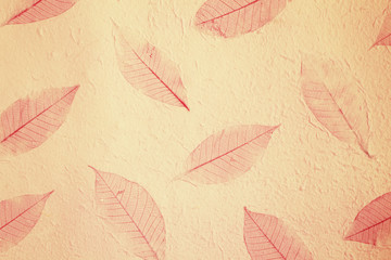 Paper Texture Background from mulberry paper