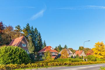 Row of classic Dutch villa's in the province of Gelderland