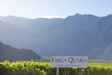 Winemaker sign Finca Quara with vineyards and mountains