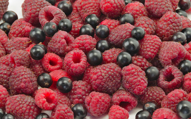 berries of raspberry and blackcurrant top view