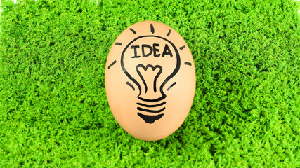 Eggs with creative idea concept isolated on green grass backgrou