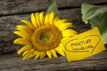 Positive thinking message next to a beautiful blooming yellow su