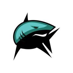 Shark Sport Vector Template