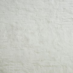 Old Rustic White Brick Wall With Painted Plaster layer Texture