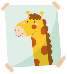 Giraffe phot on the wall