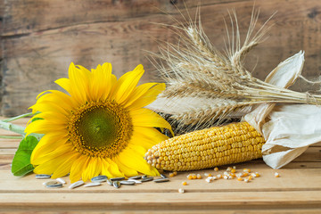 Wall Mural - Ayçiçeği,buğday ve mısır