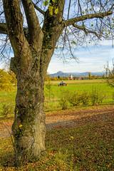 ländliche Idylle im Herbst