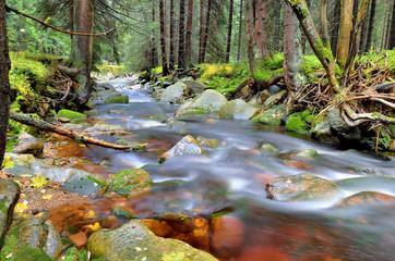 Wildwasser im Erzgebirge - die Rolava