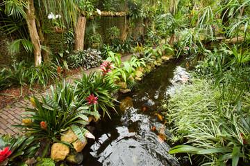 Exotic tropical garden landscape
