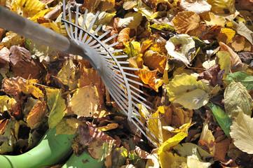 râteau à feuilles et bottes dans feuillage au sol