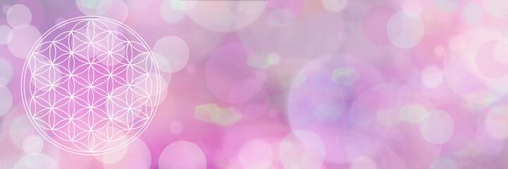 blume des lebens - wundervoll violettes licht - banner
