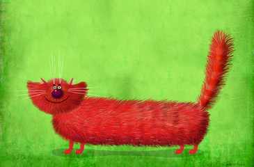 Long Fluffy Cat on Green Background