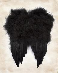 Black wings on paper