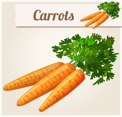 Carrots. Detailed Vector Icon. Series of food and drink and ingredients for cooking