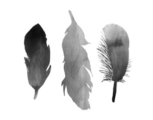 A set of three black, grey, white watercolor bird feather