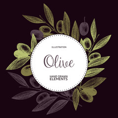 Vector design with ink hand drawn olive tree twigs. Vintage olive background isolated on dark background