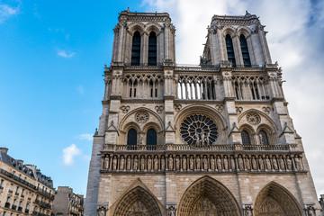 Fototapete - Cathédrale Notre Dame de Paris