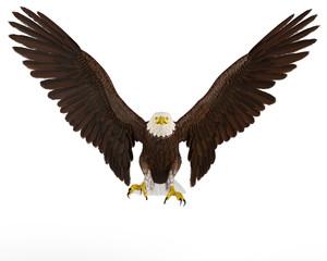 eagle front landing