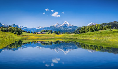 Idyllic summer landscape with mountain lake and Alps Wall mural