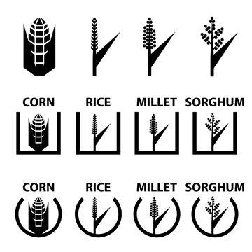 vector corn rice millet sorghum cereal symbols