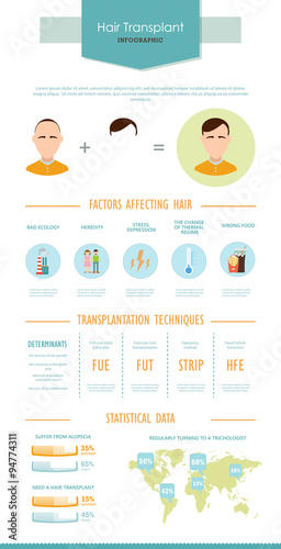 Infographic Ideas easy infographic template : Hair infographic about the problem of hair loss. Vector template ...