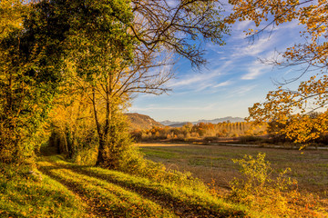 Couleurs d'automne en région Rhône Alpes