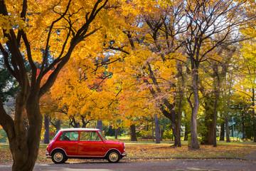 秋の風景 横