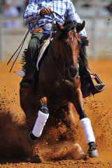 A close up view of a rider sliding the horse in the dirt