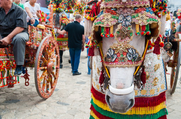 Close up view of the horse of a siclian cart and its ornamental harness