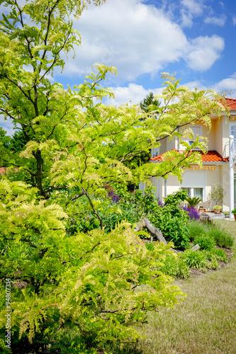 Gartengestaltung leuchtend gr ne zierakazie vor einer for Gartengestaltung villa