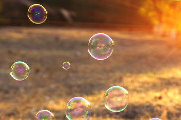 soap bubbles into the sunset