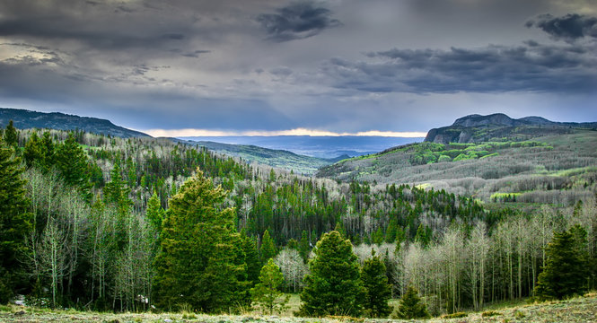 Arizona Mountains Scene