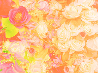 Abstract Blurry of Flower and colorful background. Beautiful colorful flowers made with color filters.