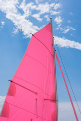 Pink colorful  sails of a sailboat