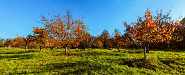 Herbstlandschaft B