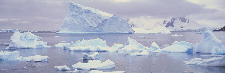 Panoramic view of glaciers and icebergs in Paradise Harbor, Antarctica