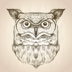 Sketch illustration of an owl head, front view.