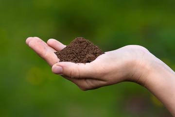 fertile soil in hands of women