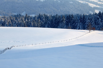Wall Mural - Winterlandschaft