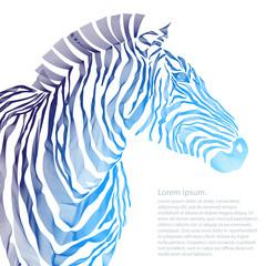 Animal illustration of vector zebra silhouette.