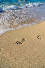 Footprints near the shoreline in the sand