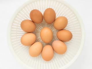 Fresh raw egg from organic farm in the plastic basket isolated o