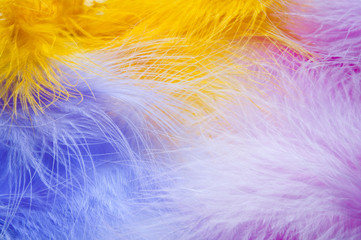 Soft feathers background