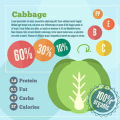 Cabbage infographics and vitamins in a flat style. Vector illustration. EPS 10