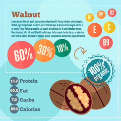 Walnut apple and vitamins in a flat style. Vector illustration EPS 10