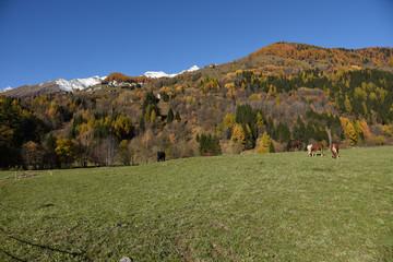 Foto sfondo montagna