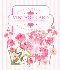 Border of flowers peony in vintage style. Vector illustration.