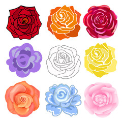 Varicolored roses set