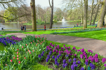 Fototapete - Keukenhof, Lisse, Netherlands - April 08, 2014: Keukenhof is the world's largest flower garden with 7 million flower bulbs on an area of 32 hectares.